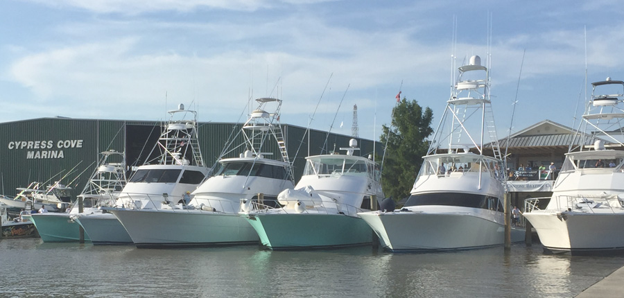 Boat Insurance 33097718